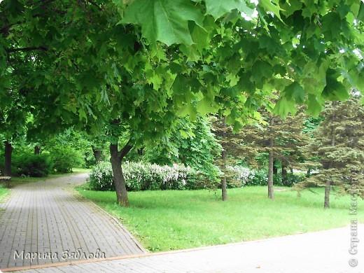 Хочу пригласить Вас посетить Таирово весной . У нас здесь очень красиво ! Большие парки , свежий воздух , и как красиво поют птицы ! фото 7
