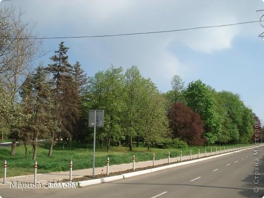 Хочу пригласить Вас посетить Таирово весной . У нас здесь очень красиво ! Большие парки , свежий воздух , и как красиво поют птицы ! фото 15