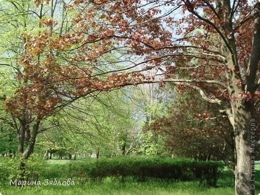 Хочу пригласить Вас посетить Таирово весной . У нас здесь очень красиво ! Большие парки , свежий воздух , и как красиво поют птицы ! фото 18