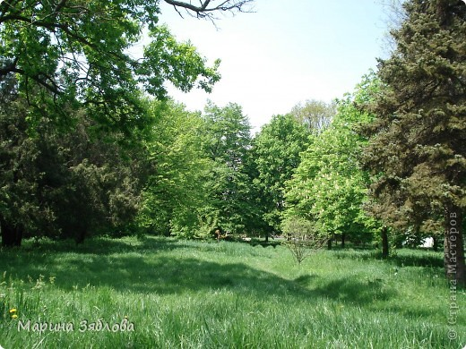 Хочу пригласить Вас посетить Таирово весной . У нас здесь очень красиво ! Большие парки , свежий воздух , и как красиво поют птицы ! фото 17