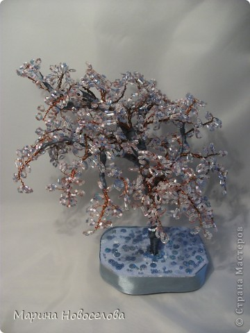 Деревья фото 30