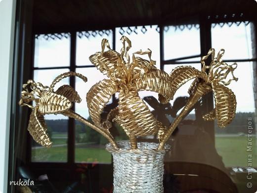 Всем здравствуйте!!! ))) Вот окрасила свои давние плетения,подруга увидела у меня серебрянный велосипед и ей захотелось такой же,только краска у меня была золотая,окрасила в золото... посмотрите что вышло )))  фото 3