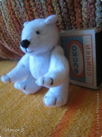 Медвежата фото 4
