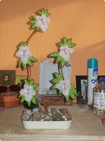 Это моё первое дерево, мужу в подарок фото 16