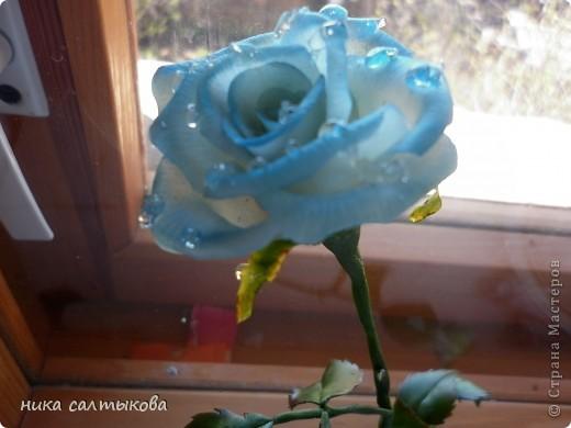 """Приветствую вас, дорогие мастерицы. Выставляю на ваш суд очередные розы. """"Роса"""" - гель имитация воды. Вот только не знаю как с  ней пользоваться, может кто-то знает: подскажите, буду очень благодарна. фото 1"""