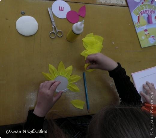 Вот они,наши солнышки-подсолнушки ! Круглый год радуют нас !!!!! фото 16
