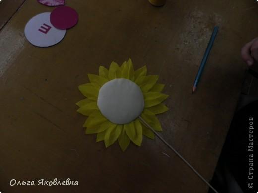 Вот они,наши солнышки-подсолнушки ! Круглый год радуют нас !!!!! фото 21