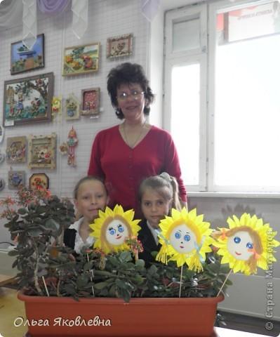 Вот они,наши солнышки-подсолнушки ! Круглый год радуют нас !!!!! фото 22