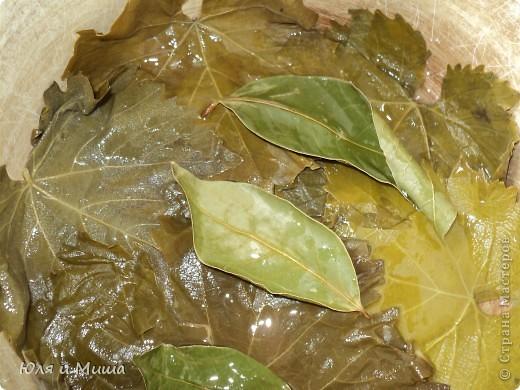 Долма имеет множество вариантов рецептов. Некоторые даже называют ее голубцами в виноградных листьях. Это не совсем так. Все зависит от начинки.  Предлагаем свой вариант блюда. Ингридиенты: мясной фарш - 500 г молодые виноградные листья - 30 штук лук - 2 больших головки кинзу - 1 пучек томат (или кетчуп) подсолнечное масло лавровый лист соль, перец - по вкусу фото 4
