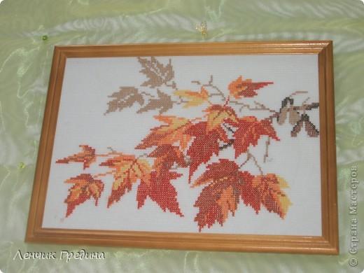 Осень фото 1