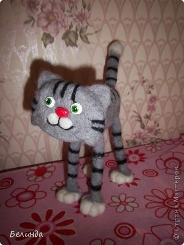 Котик в полосочку.