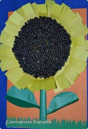 Бумага, семечки, пластилин и Подсолнух готов!  Ребенку почти 5 лет, делала с удовольствием! На втыкание семечек ушло около часа времени... )))) фото 1