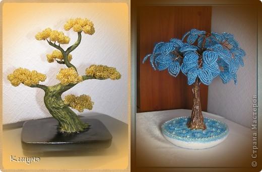 Золотой бонсай и Ледяное дерево фото 1