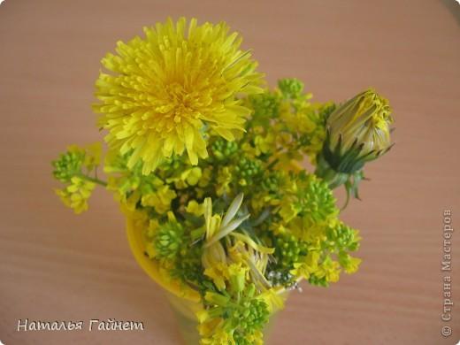 """Всем гостям моего репортажа желаю Доброго дня! Представляю Вашему вниманию цветы нашего балкона.Петуньи.Разные.И такие прекрасные! Первая красавица - """"Туман орхидеи"""". фото 21"""
