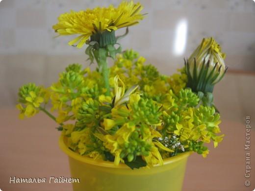 """Всем гостям моего репортажа желаю Доброго дня! Представляю Вашему вниманию цветы нашего балкона.Петуньи.Разные.И такие прекрасные! Первая красавица - """"Туман орхидеи"""". фото 22"""