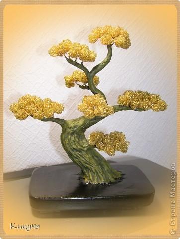 Золотой бонсай и Ледяное дерево фото 2