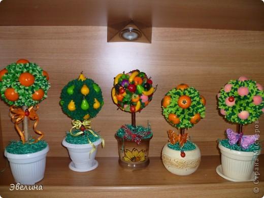 Деревья из фруктов своими руками