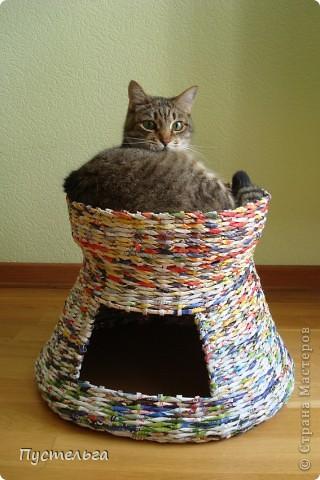 Вот дом для кота, который пугает и ловит синицу... фото 1