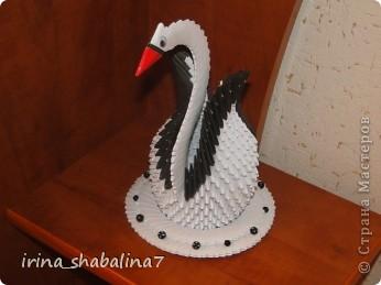 Вот и у меня тоже появился красавец лебедь, которого я выставляю на Ваш суд.
