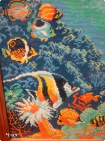 Морское дно. фото 3