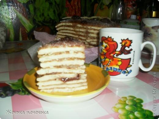 Вот такой тортик можно приготовить за небольшое количество времени. Дешево и сердито!!!!! фото 9