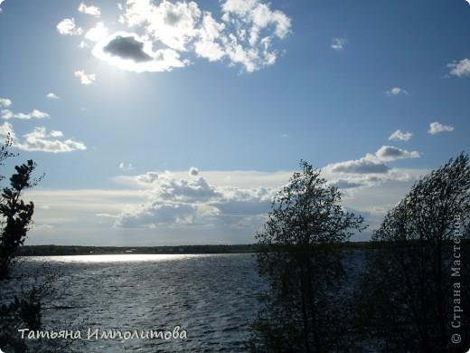 Не часто встретишь на Урале миндаль,а такое чудо я вообще видела первый раз! фото 19
