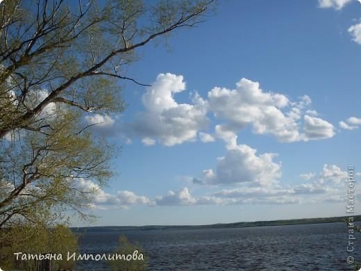 Не часто встретишь на Урале миндаль,а такое чудо я вообще видела первый раз! фото 18
