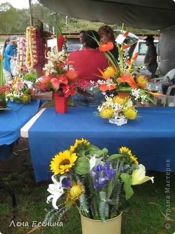Леи - гирлянды цветов. Ими принято встречать приезжающих, конечно... за дополнительную плату. :) фото 36