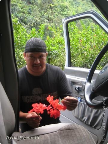 Леи - гирлянды цветов. Ими принято встречать приезжающих, конечно... за дополнительную плату. :) фото 40
