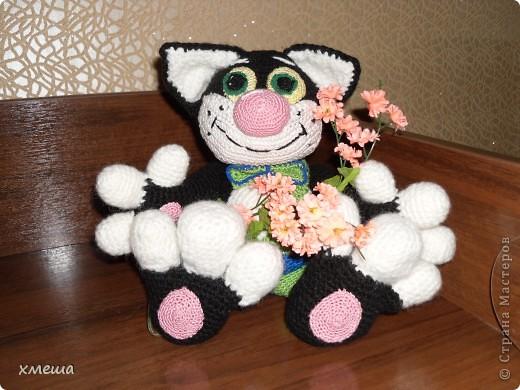 Кот Тимошка фото 1
