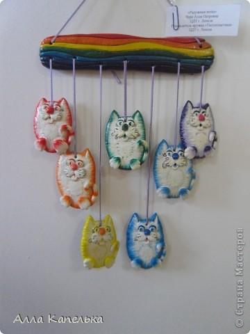 мои радужные котики фото 1