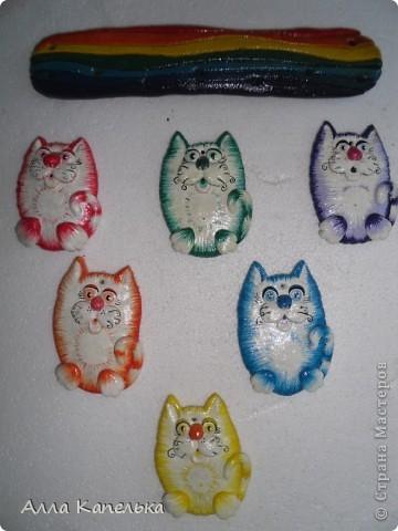мои радужные котики фото 8