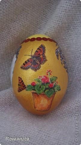 """Вот такие яйца делала к Пасхе. Фотографировал муж на скорую руку перед """"раздачей"""".  фото 10"""
