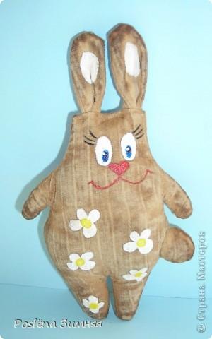 Ромашковый заяц. фото 1
