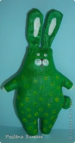 Ромашковый заяц. фото 19