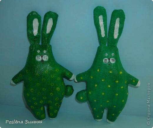 Ромашковый заяц. фото 21