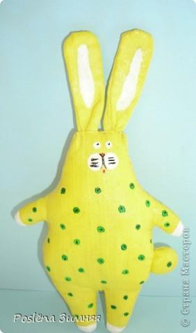 Ромашковый заяц. фото 16