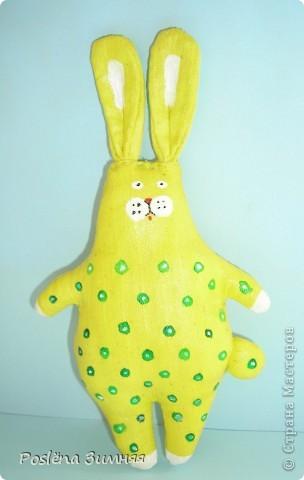 Ромашковый заяц. фото 17