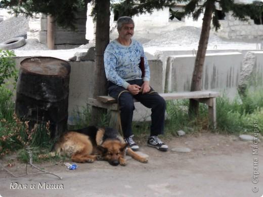 Чем поразил меня зоорынок Тбилиси, так это спокойствием. Никто не визжал, не скулил, не вырывался, не звал. Даже гомонливые птицы вели себя тихо. фото 1