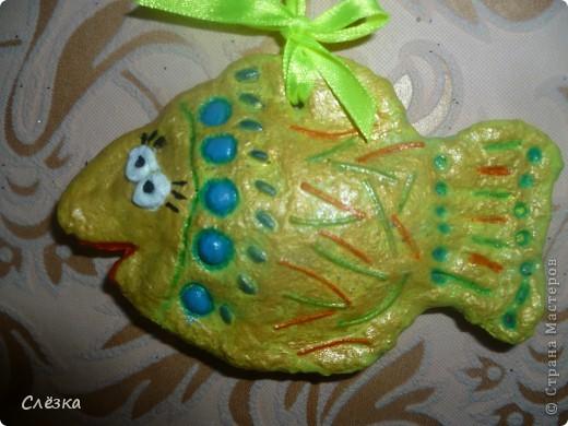 Мои первые рыбы)) фото 1