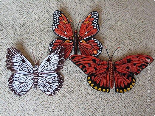 У меня появилась ещё одна бабочка.  Размер 7х8 см. Полоски 1,5 мм. фото 4