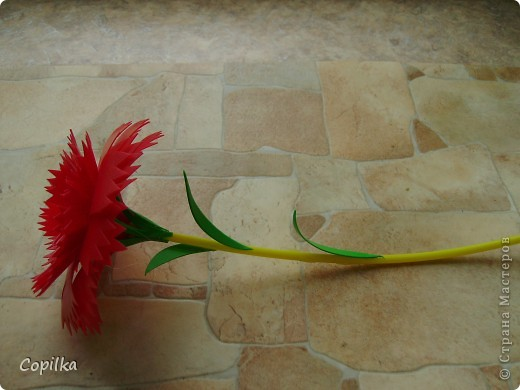 А у меня появился - вот такой цветочек! фото 1