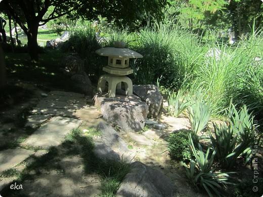 В моём городе есть красивое место - японский сад. Меня сразу встретил там аист. фото 10