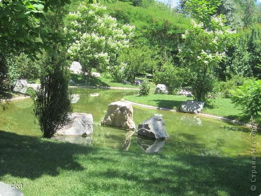 В моём городе есть красивое место - японский сад. Меня сразу встретил там аист. фото 11