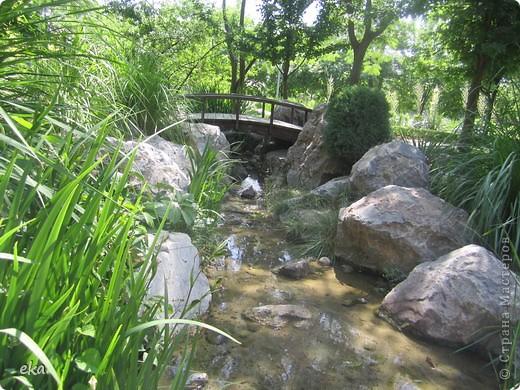 В моём городе есть красивое место - японский сад. Меня сразу встретил там аист. фото 8
