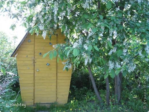 """Вот такие бабочки уселись на нашем дачном """"жёлтом домике"""".  Вырезаны из жестяной банки из-под пива.  фото 2"""
