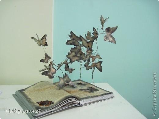 Каждый раз, читая книгу, нам открывается удивительный мир....  фото 2