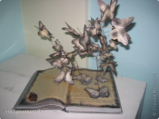 Каждый раз, читая книгу, нам открывается удивительный мир....  фото 4