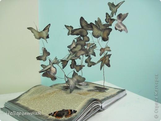 Каждый раз, читая книгу, нам открывается удивительный мир....  фото 3
