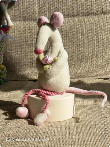крыска Марта фото 2